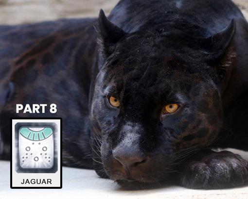 Mayan Jaguar Time - Part 8