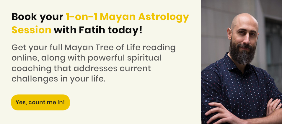 Private Online Mayan Tree of Life Reading-Mayan Astrology