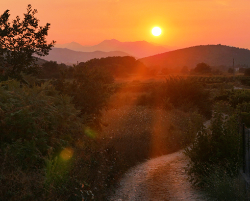August New Moon 2020: Traveling The Winding Road